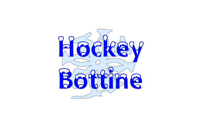 Tournoi de Hockey Bottine 2019